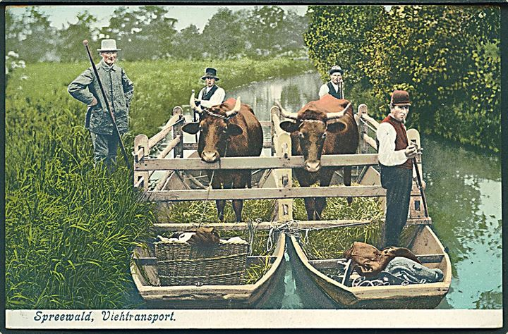Spreewald, Viehtransport, Tyskland. Hermann Striemann, Cottbus. 25.