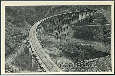 Hapuawhenda Viadukt. Longest on main trunk line, near Ohakune, N. Z. Jernbanebro. Series u/no.